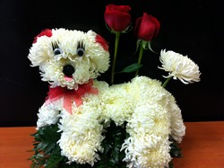 Puppy Love in Chicago at Crystal Flower Shop