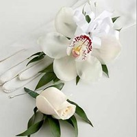 Set of Cymbidium Corsage with Rose Boutonniere in Chicago at Crystal Flower Shop