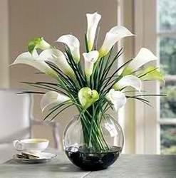White Callas in Chicago at Crystal Flower Shop