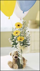 FTD Welcome Bear Bouquet in Chicago at Crystal Flower Shop