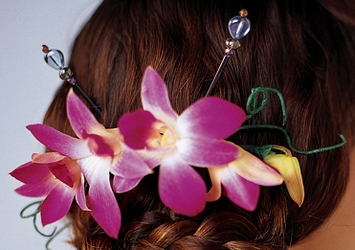 Elegant Orchid Headpiece in Chicago at Crystal Flower Shop