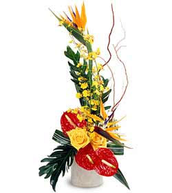 FTD Tropical Bright Arrangement in Chicago at Crystal Flower Shop