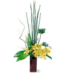 FTD Touch of Tropics Arrangement in Chicago at Crystal Flower Shop