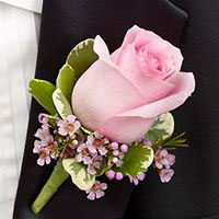 Pink Rose Boutonniere in Chicago at Crystal Flower Shop