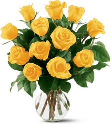 12 Yellow Roses in Chicago at Crystal Flower Shop